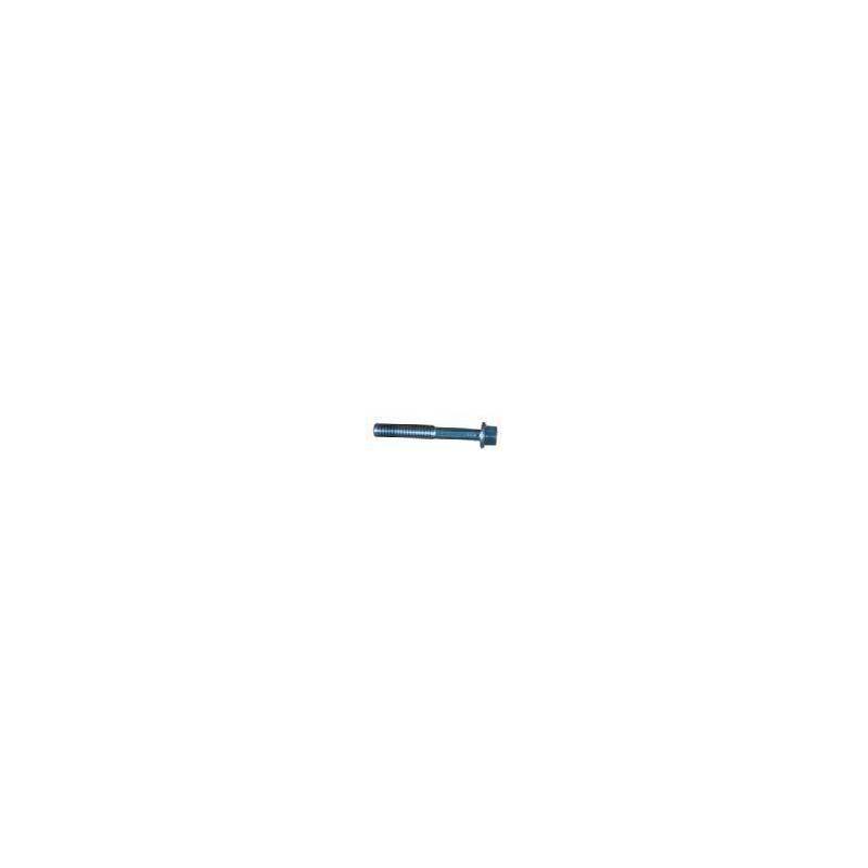 Particolare n. 2 CODICE 86362  VITE M6x105