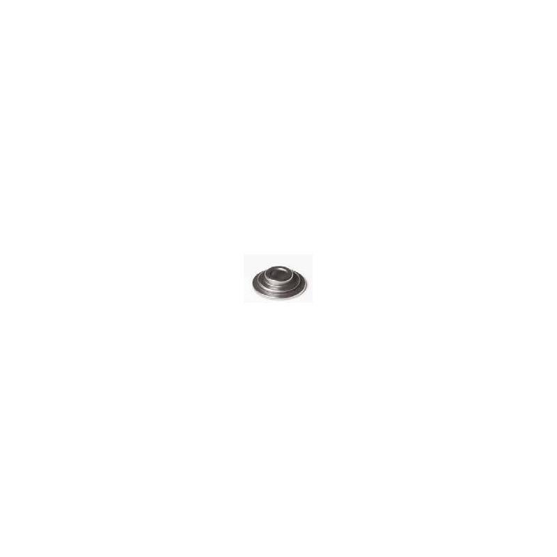 Particolare n. 7 CODICE 15705-I008-0000  PIATTELLO
