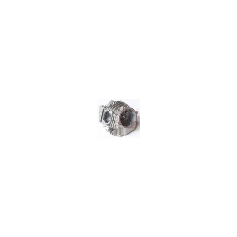 Particolare n. 8 CODICE 1122B-JE15-03000W  TESTA