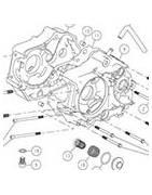 Carter motore Daytona Pit Bike